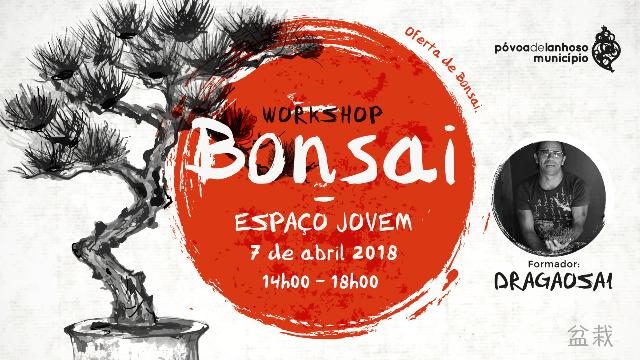 Espaço Jovem promove Workshop de Bonsai no dia 7 de abril