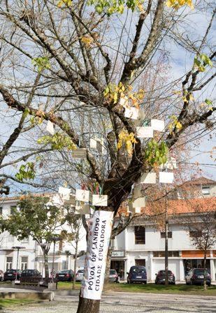 Póvoa de Lanhoso implementa projeto de promoção do sucesso escolar