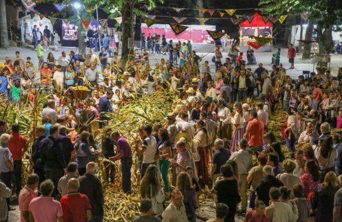 """""""Desfolhada Tradicional – Carreira Aldeia d'Ouro"""" convida à participação da comunidade"""