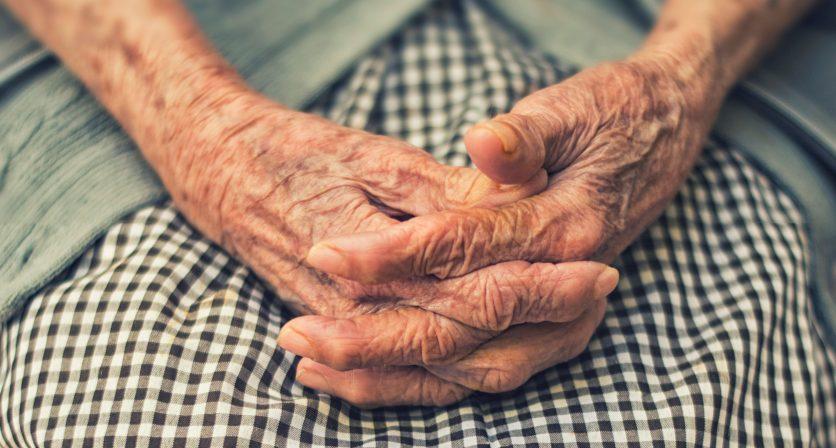 COVID-19: Câmara Municipal da Póvoa de Lanhoso apoia idosos nas necessidades do dia a dia 1