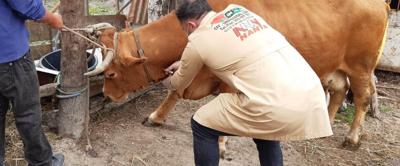 Câmara Municipal da Póvoa de Lanhoso apoia produtores agro-pecuários