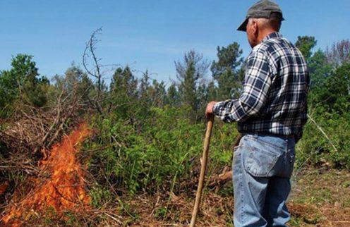 Queimas e queimadas autorizadas a partir de 1 de outubro